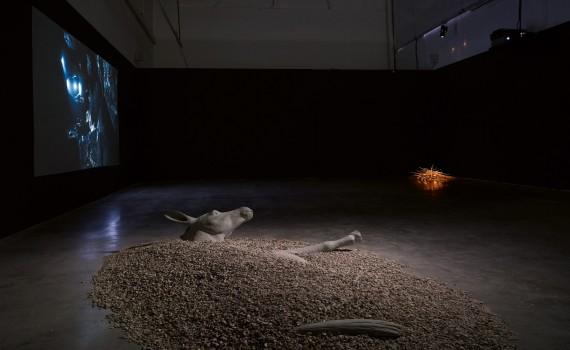 2011_ruee-vers-la-perdition_palais-de-tokyo_vue-exposition