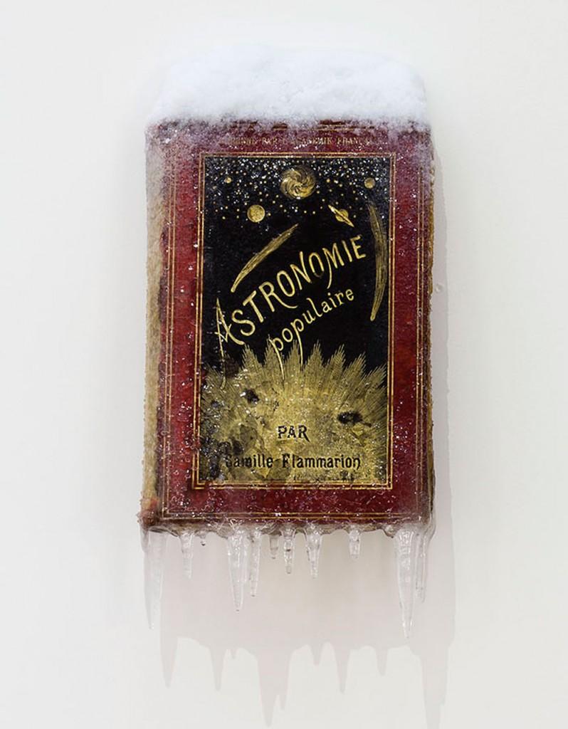"""2015 / """"Astronomie populaire"""", livre ancien, résine, neige et givre artificiels, dimensions 28x8x15cm"""